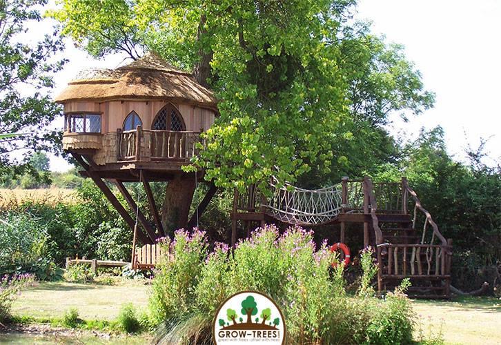 Amberley Castle Treehouse