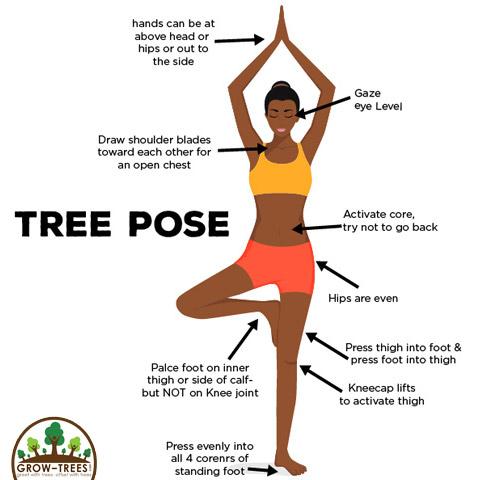 try vrikshasana or the tree pose on international yoga day