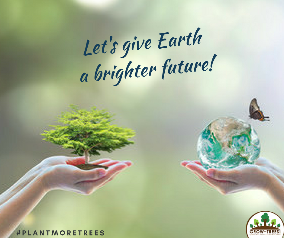 PLANT A TREE WITH A CLICK OF A BUTTON THIS EARTH DAY ...