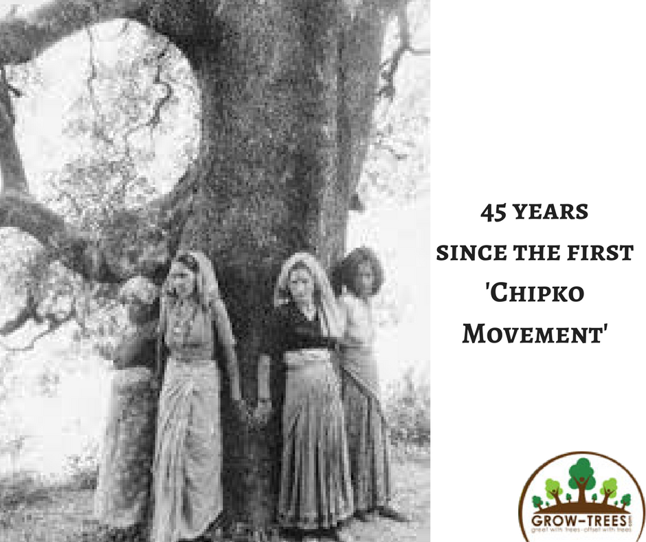 Eco-feminism: bringing together two powerful forces