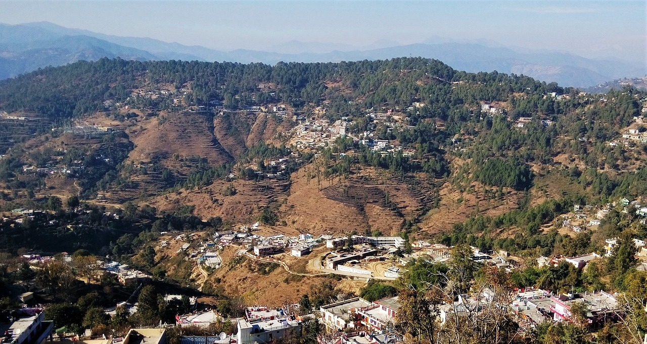 Van Panchayats to the rescue: Uttarakhand's unique system of forest management!